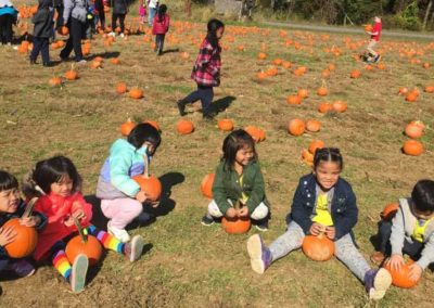 young-kids-having-fun-at-a-pumpkin-patch
