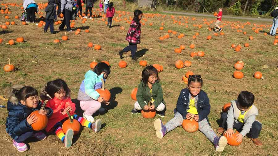 Kids with pumpkins having fun at a pumpkin patch